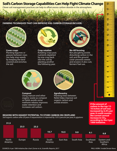 ag-climate-solutions-infographic-explainer-1058px.png